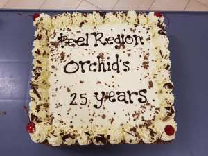 PROS 25th Cake